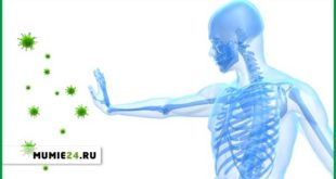 Как пить мумие для иммунитета