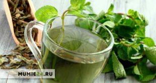 Какую пить траву для похудения